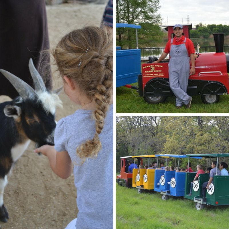 RMF - Brazos Train Rides Petting Zoo