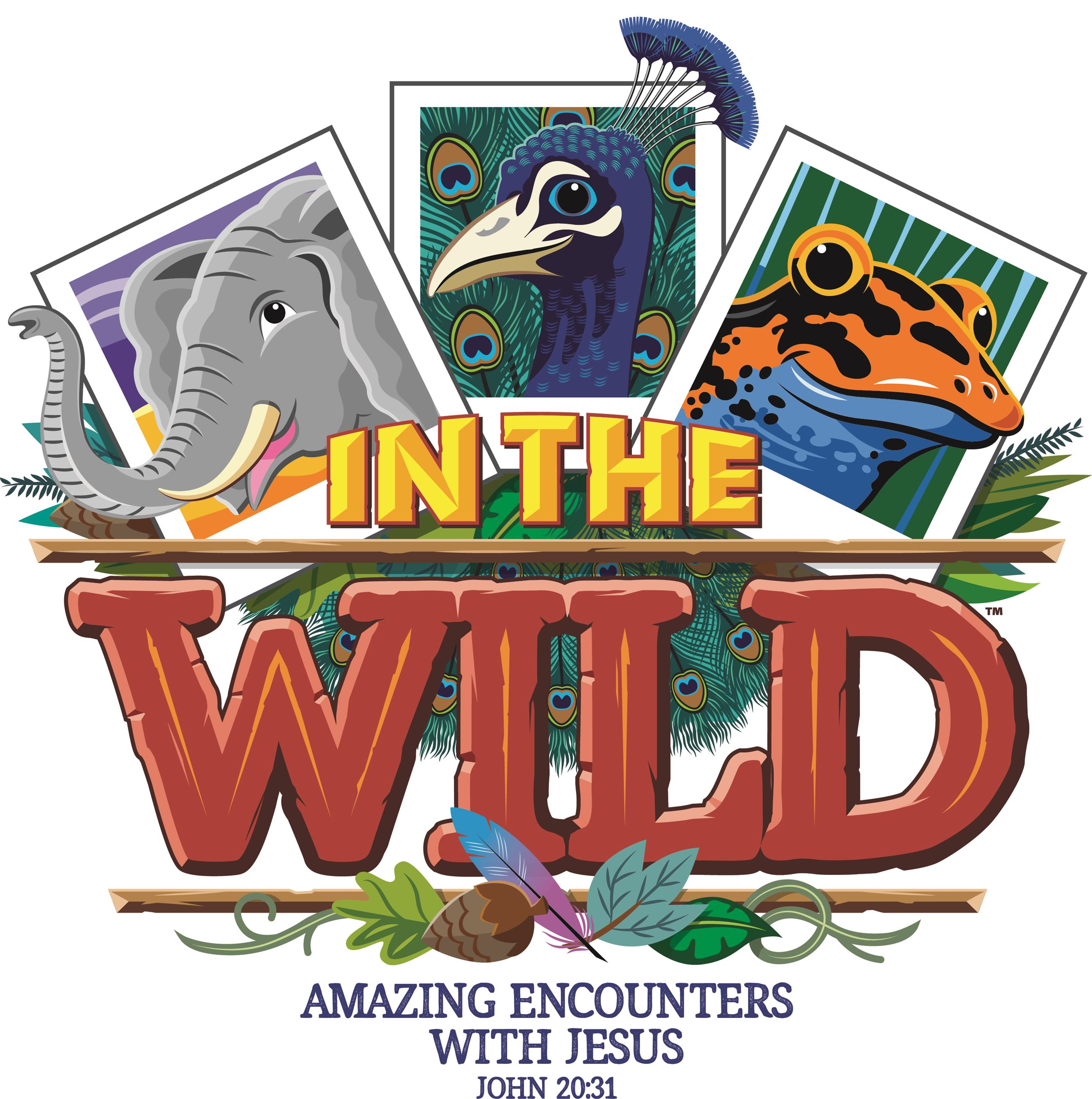 First Baptist Church; Vacation Bible School; In the Wild; Amazing Encounters with Jesus; John 20:31;